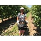 Плодовая сумка для сбора фруктов СПАК-1